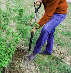 Вили - алтернатива за прави лопати
