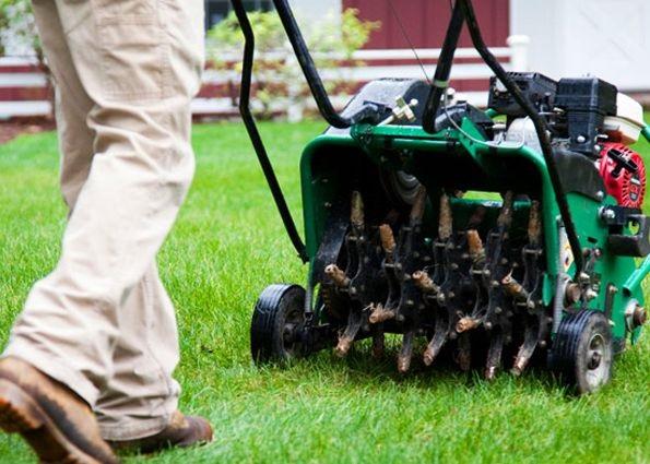 Моторизирани аератори за трева