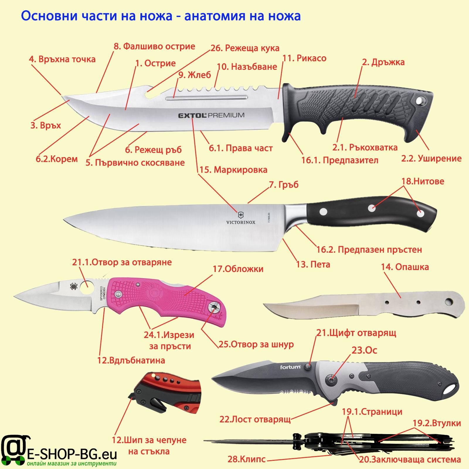 Основни части и елементи на ножове. Анатомия на ножа